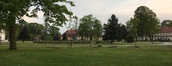 Oficyna Winiarza - Apartament przy Zamku is one of Orte, die Szymon gefallen.