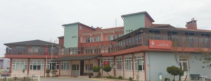 Zübeyde Hanım Huzurevi ve Çocuk Yuvası® is one of Locais curtidos por Sıla.