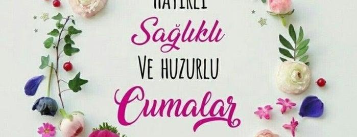 İAYOSB Merkez camii is one of Şahnygun 님이 좋아한 장소.