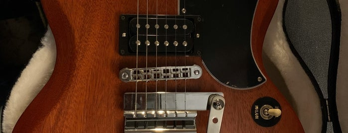 Twelfth Fret is one of Music Instrument Stores in Canada.