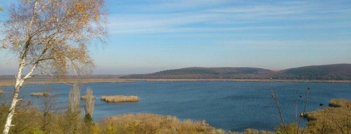 Резерват Сребърна (Srebarna Nature Reserve) is one of UNESCO World Heritage Sites in Eastern Europe.