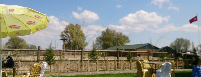Haydarbey Köşkü is one of Gespeicherte Orte von Nurçin.
