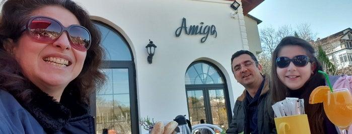 Amigo is one of İzmir'de yeme içme sanatı.