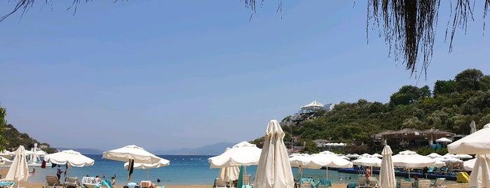Hilton Bodrum Türkbükü Beach is one of Merveさんのお気に入りスポット.