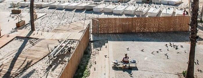 Beachfit Barcelona is one of Posti che sono piaciuti a Vova.