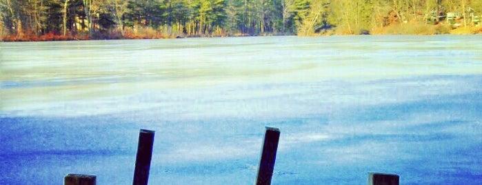 Lake Basile is one of สถานที่ที่ Bryan ถูกใจ.