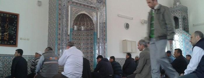 2. Organize Camii is one of Orte, die Mustafa gefallen.