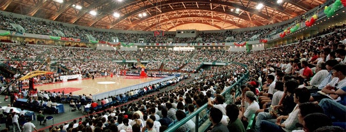 Altice Arena is one of Salas de espetaculos.