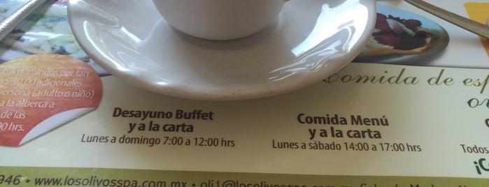 """Restaurant """"La Verde Aceituna"""" is one of Oaxaca."""