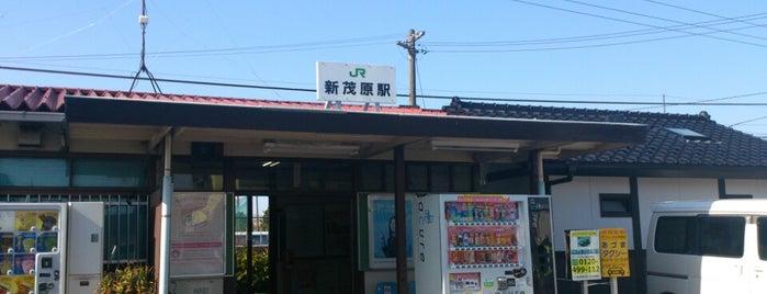 Shim-Mobara Station is one of JR 키타칸토지방역 (JR 北関東地方の駅).