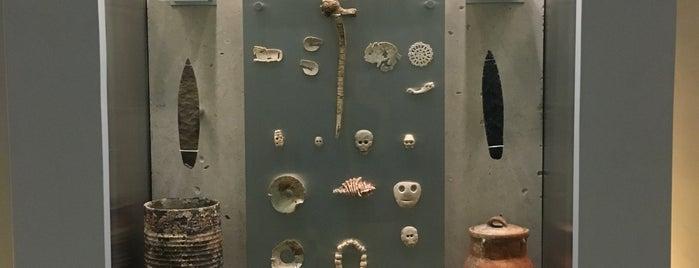 Gran Museo del Mundo Maya is one of Tempat yang Disukai Sofia.