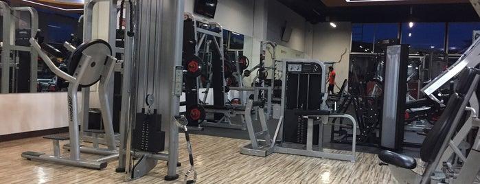 Prime Fitness is one of สถานที่ที่ Antonio ถูกใจ.