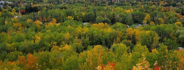 Hawk Ridge Bird Observatory is one of 82 Best Birdwatching Spots in the US.