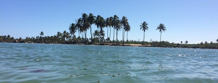 Pontal de Maracaípe is one of Orte, die Laila gefallen.