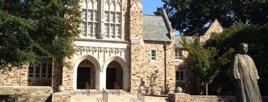 Rhodes College is one of St. Jude Marathon 2011.