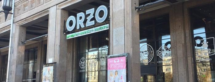 ORZO is one of Szakszuka 4 life.