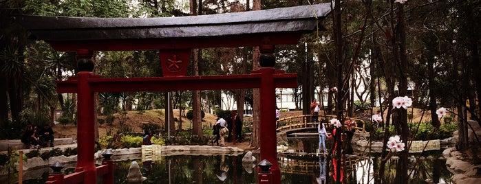 Parque Masayoshi Ohira is one of Lau : понравившиеся места.