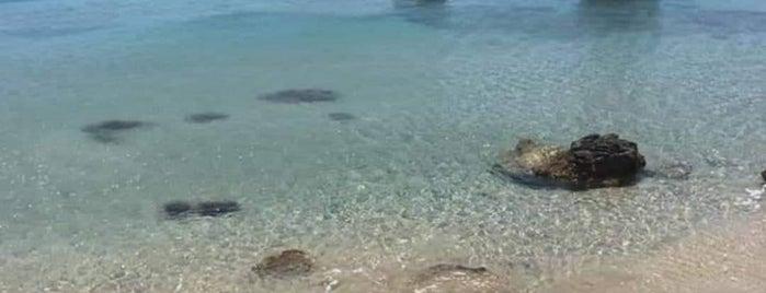 Damatria Beach is one of G&S Karpathos.