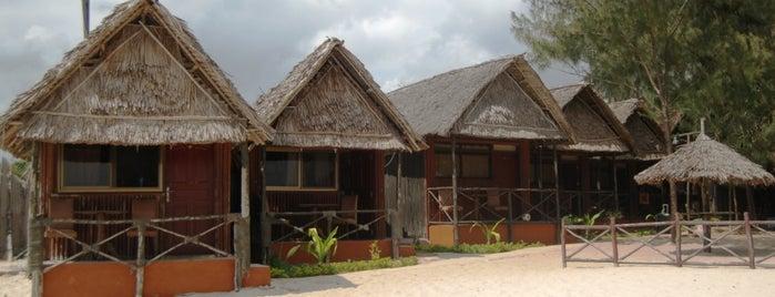 Sunrise beach resort is one of Tanzanya Zanzibar Gezilecek Yerler.