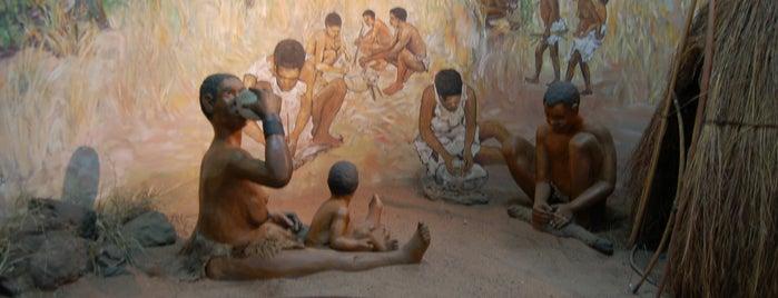 The Livingstone Museum is one of Zambiya Victoria Selalesi.