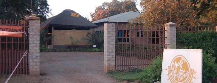 Olga's The Italian Corner is one of Zambiya Victoria Selalesi.