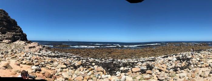 Camps Bay Beach is one of Tempat yang Disukai Sabrina.