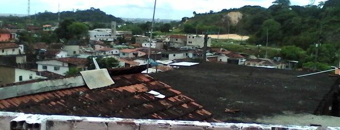 rua alminio afonso is one of Prefeito.