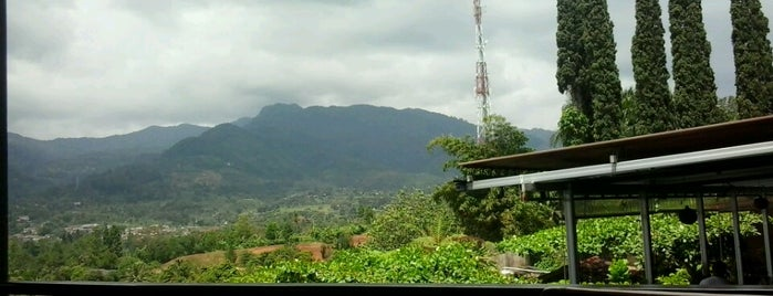 Cimory Mountain View is one of Bogor ☺.