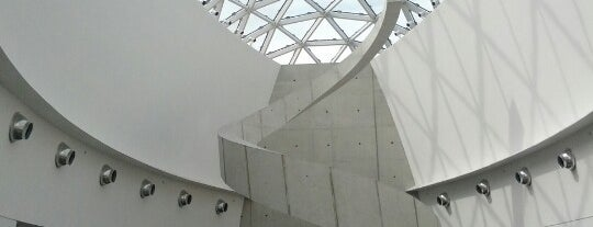 The Dali Museum is one of Top American and Canadian Art Museums.