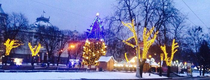 Різдвяний ярмарок is one of Lieux qui ont plu à Oleksandr.