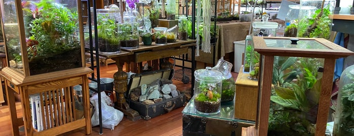 Roosevelt's Terrariums is one of Portland.