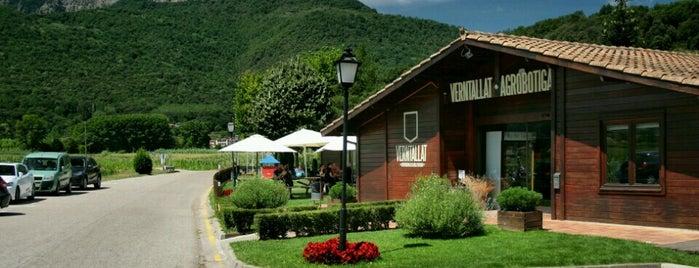 Restaurant Verntallat is one of Comidos PENINSULA.