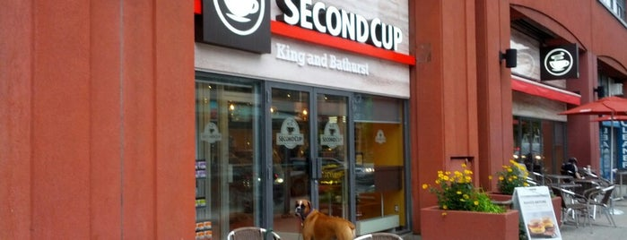 Second Cup is one of Toronto free wifi.