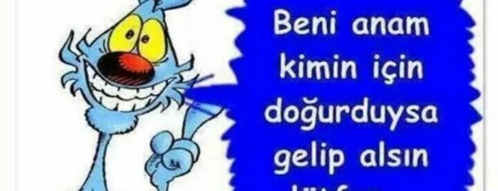 Evim evim güzel evim :) is one of dostlardan tavsiyeler :).