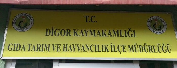 Digor ilçe Gıda Tarım ve Hayvancılık Müdürlüğü is one of Tempat yang Disimpan Isa Baran.