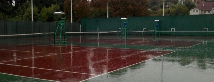 Теннисные корты is one of Locais curtidos por Lyu.