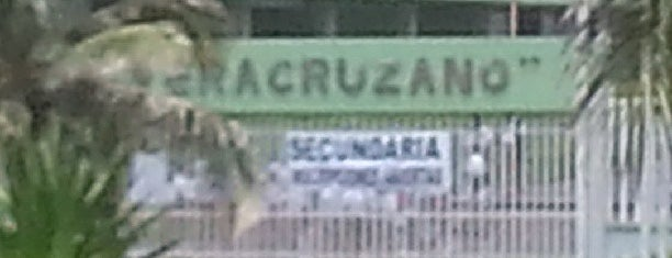 Ilustre Instituto Veracruzano is one of Escuela.