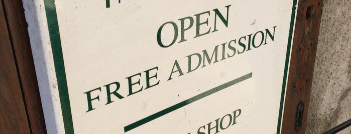 The Orkney Museum is one of สถานที่ที่บันทึกไว้ของ Sevgi.