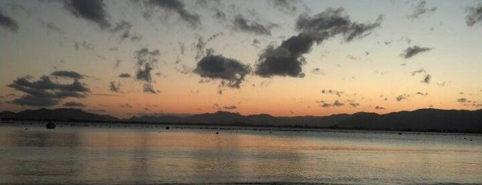 Praia Ponta do Papagaio is one of Locais curtidos por M.a..