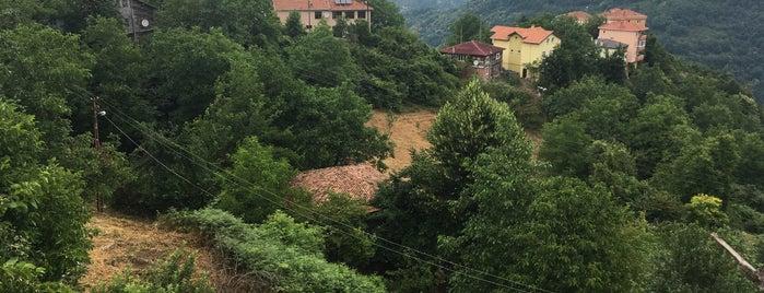 yüksek mahalle is one of Safiyebaspinarbayat'ın Beğendiği Mekanlar.