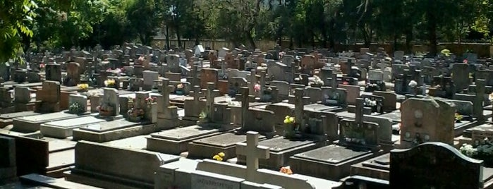 Cemitério Municipal São João is one of Cemitérios.