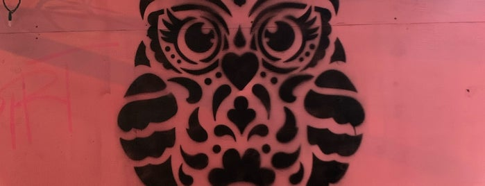 The Spotted Owl is one of Bars.