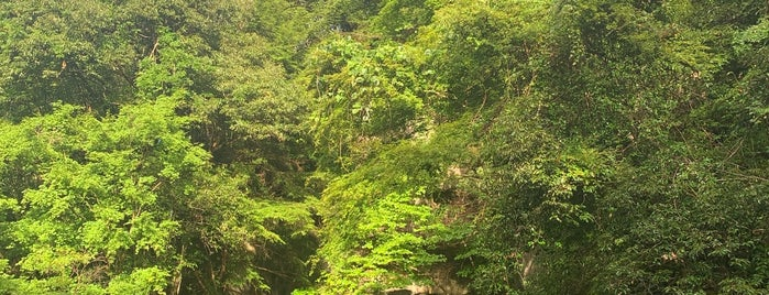 濃溝の滝 is one of T: сохраненные места.