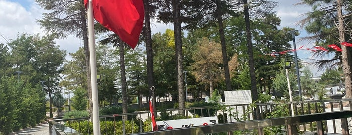 Şehit Ömer Halisdemir Şehitliği is one of Posti che sono piaciuti a 🇹🇷.