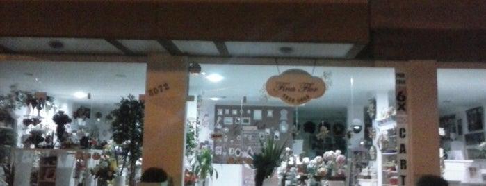 Fina Flor is one of Caffes.