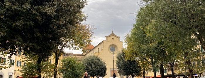 Basilica di Santa Maria del Carmine is one of Florence.