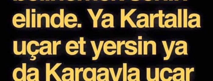 BAŞKENT KUAFÖR is one of Ayşe : понравившиеся места.