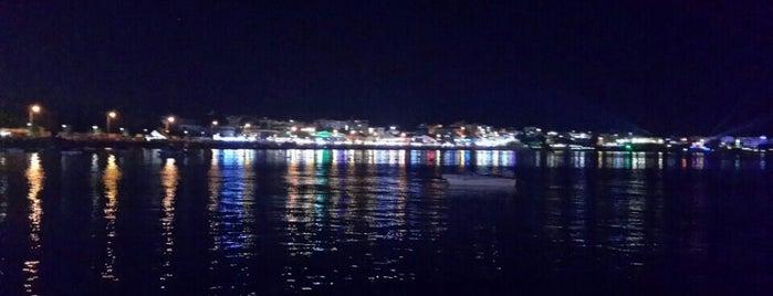 Altınkum Sahil Yürüyüş Yolu is one of Locais salvos de Necip.