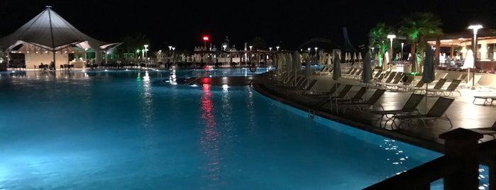 Aquasis Deluxe Resort Pool Bar is one of Lieux qui ont plu à Mehmet Ali.
