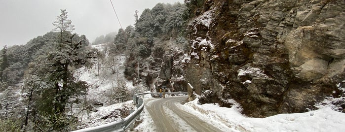 Jalori Pass is one of India North.